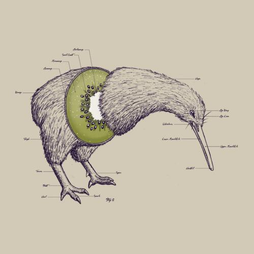 """""""Kiwi"""""""